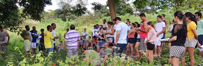 Um grupo de pessoas está de pé entre árvores